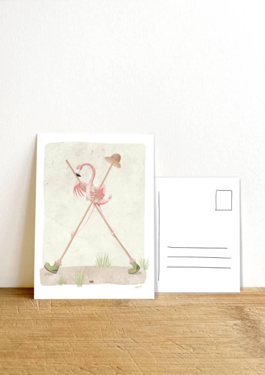 Ansichtkaart_flamingoopstelten_foto